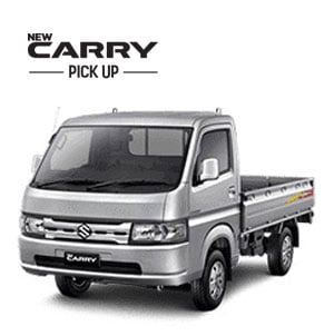 Carry Pick up